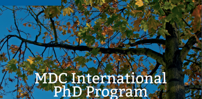 Max-Delbruck-Centrum-PhD-Program-2017-Germany.png