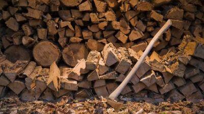 Печките на дрва опасни за белите дробови !
