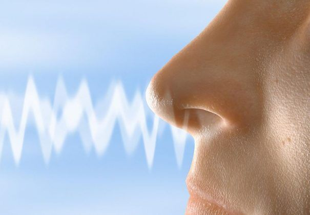 digital-scents-e1543444402141.jpg