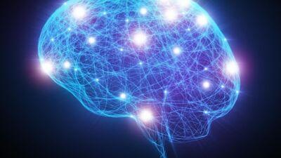 """Студентите на УАКС ФПН во посетa на """"Когниција"""" – Центар за невропсихологија, психотерапија и психологија"""