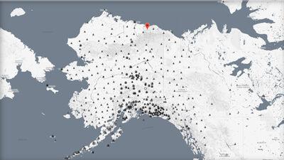 На Аљаска пронајдени над 60 угинати фоки