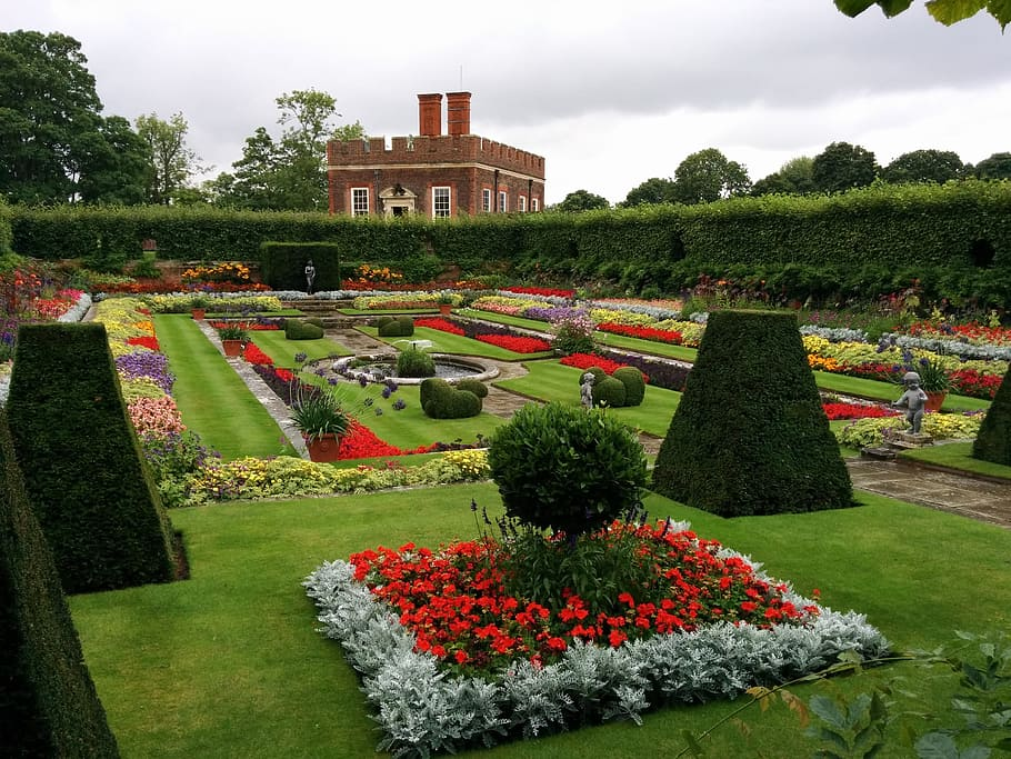 garden-british-flower-summer.jpg